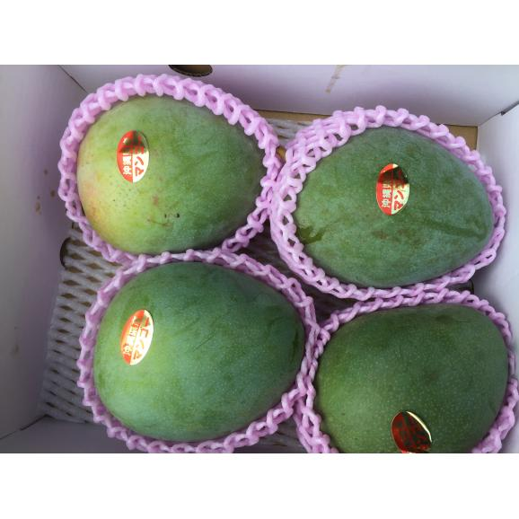 沖縄県産キーツマンゴー 優品約2kg 【発送時期7月中旬~9月上旬】02
