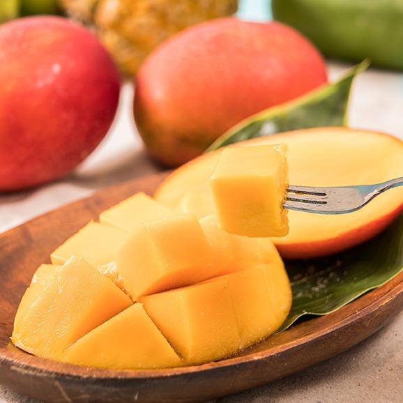 アップルマンゴーとミニマンゴーセット各 2kg 合計約4kg 【発送時期6月中旬~8月上旬】01