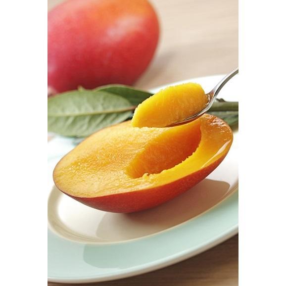 アップルマンゴーとミニマンゴーセット各 2kg 合計約4kg 【発送時期6月中旬~8月上旬】03