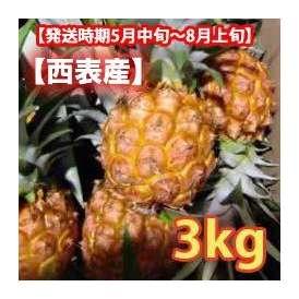スナックパイン西表産 約3kg (3~5玉) 【発送時期5月上旬~8月上旬】