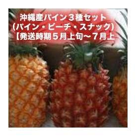 沖縄産パイン3種セット(パイン・ピーチ・スナック)各1個 合計2.5kg 【発送時期5月上旬~7月上旬】