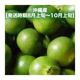 青切りみかん4kg 【発送時期8月上旬~10月上旬】