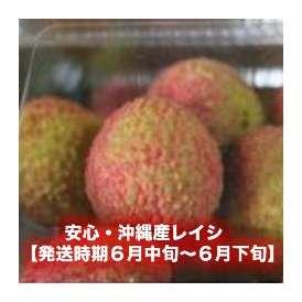 安心・沖縄産レイシ 1kg 【発送時期6月中旬~6月下旬】