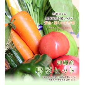 たっぷり沖縄産野菜セット6種類以上 【発送時期:通年】