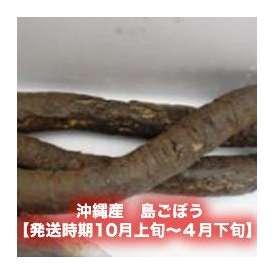 島ごぼう約1kg 【発送時期10月上旬~4月下旬】