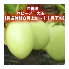 ペピーノ 大玉 約2kg 【発送時期8月上旬~11月下旬】