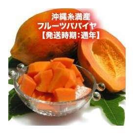 無農薬(読谷または糸満産)フルーツパパイヤ 約2kg 【発送時期:通年】