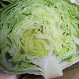 【お買い得セール】沖縄県産レタス 1箱約6~8kg(約12~18個前後)