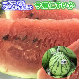 今帰仁スイカ 大玉 1個 約4kg以上 【年中発送】