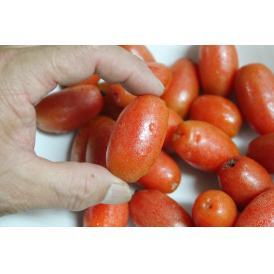 沖縄県産 果実 グミ 4パック @200g~250g 計約800~1㎏