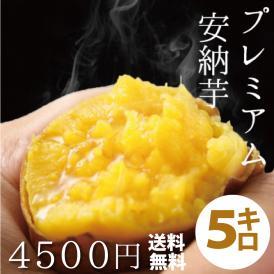 【予約開始】関西TV「よーいドン!」で大絶賛されました!!天然スイーツのようなさつまいも!鹿児島県種子島産 蜜芋(サツマイモ)5kg安納芋(あんのういも)