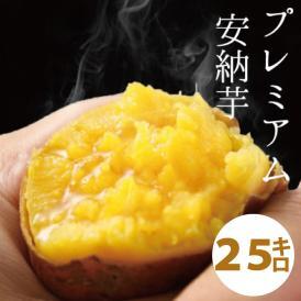 【予約開始】関西TV「よーいドン!」で大絶賛されました!!天然スイーツのようなさつまいも!鹿児島県種子島産 蜜芋(サツマイモ)25kg安納芋(あんのういも)は焼き芋に最適なさつまいも