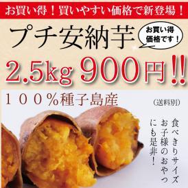 プチサイズ安納芋(サツマイモ)2.5kg900円