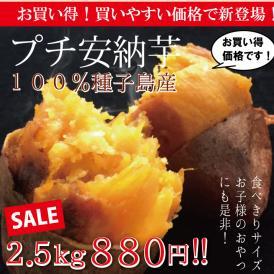 プチサイズ安納芋(サツマイモ)ただ今セール中!2.5kg880円!!