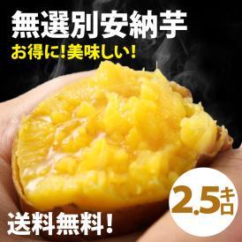 無選別安納芋2.5kg(あんのういも)は安納芋は焼き芋に最適なさつまいも