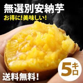 無選別安納芋5kg(あんのういも)は安納芋は焼き芋に最適なさつまいも
