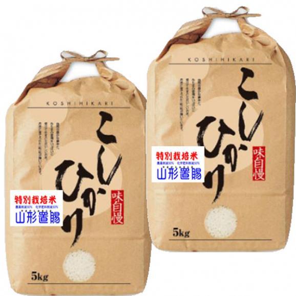 山形県産 コシヒカリ 特別栽培米 10kg 5kg×2袋 28年産 送料無料 玄米 精白米 7分づき 5分づき 3分づき オーダー精米04