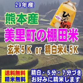 29年産 熊本産 美里町の棚田米 ヒノヒカリ 5kg  送料無料 玄米 精白米 7分づき 5分づき 3分づき オーダー精米