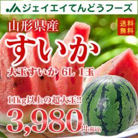 【送料無料】山形県産すいか6L/1箱1玉いり
