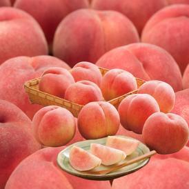 【送料無料】山形県産 白桃 品種おまかせ約2kg(5玉~10玉) ※一部地域は別途送料