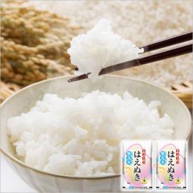 【送料無料】令和元年産 山形県産はえぬき無洗米10kg(5kg×2) ※一部地域は別途送料追加