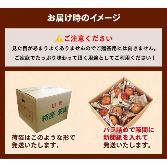 【送料無料!※一部地域除く】 訳あり山形県産りんご 約10kgバラ詰め02
