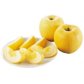 山形県天童産はるかりんご2kg