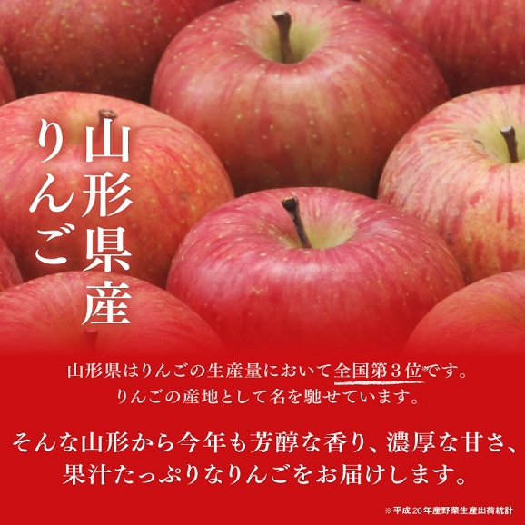 【送料無料!※一部地域除く】 訳あり山形県産小玉サンふじりんご 約5kgバラ詰め04