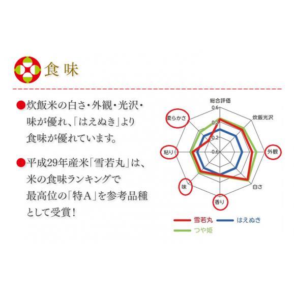 【送料無料】令和元年産 山形県産雪若丸精米5kg ※一部地域は別途送料追加03