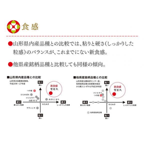 【送料無料】令和元年産新米 山形県産雪若丸精米5kg ※一部地域は別途送料追加04