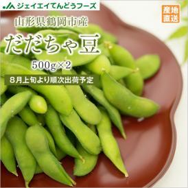 【送料無料 ※一部地域除く】訳あり山形県鶴岡市産だだちゃ豆セット(約1kg)