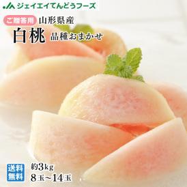 贈答用 秀品 山形県産 白桃 品種おまかせ(夏かんろもしくは美郷など) 約3kg 8~14玉ギフト