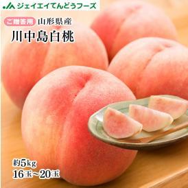 贈答用  山形県産 白桃川中島 約5kg 12~20玉