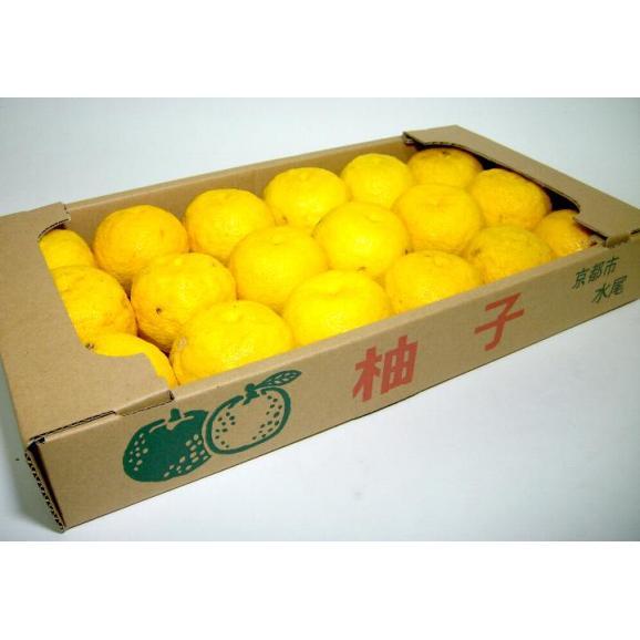 京都産 水尾の柚子 ゆず  1.5kg 18個~21個前後入り02