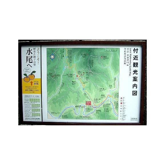 京都産 水尾の柚子 ゆず  1.5kg 18個~21個前後入り05