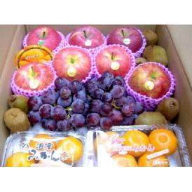 果物屋さんの旬のフルーツセット 約4kg 送料無料(一部地域除く)
