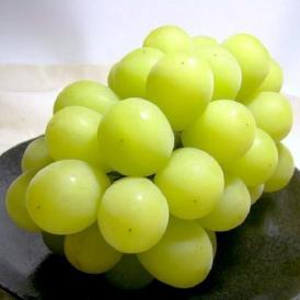 山梨産 シャインマスカットぶどう 約700g (350g×2)種無しブドウ