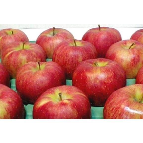 青森産 ジョナゴールドりんご 約10kg 36~40個入り01