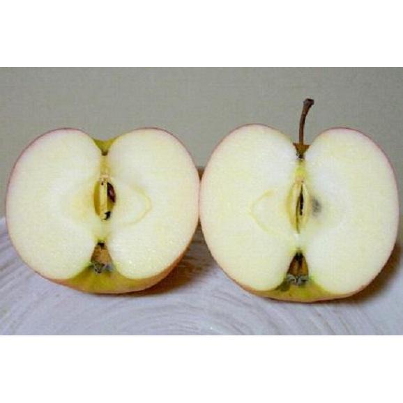 青森産 ジョナゴールドりんご 約10kg04