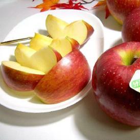【送料無料 ※一部地域除く】長野産 シナノスイートりんご 約5kg 小玉|林檎 アップル リンゴ