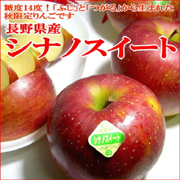 【送料無料 ※一部地域除く】長野産 シナノスイートりんご 約5kg 小玉 林檎 アップル リンゴ02