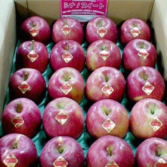 【送料無料 ※一部地域除く】長野産 シナノスイートりんご 5kg04
