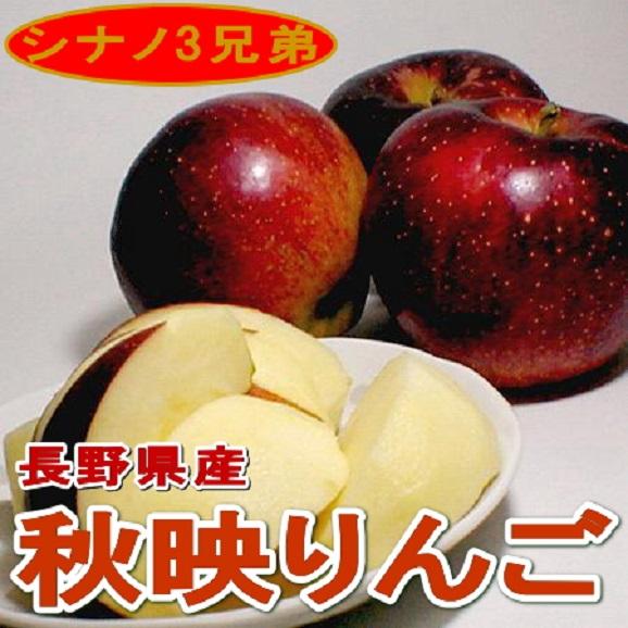 【お試し!送料無料 ※一部地域除く】秋映(あきばえ)りんご 約5kg02