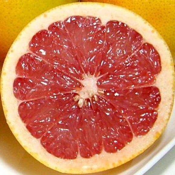 グレープフルーツセット 15個入り(白肉9個・赤肉6個) 南アフリカ産 02