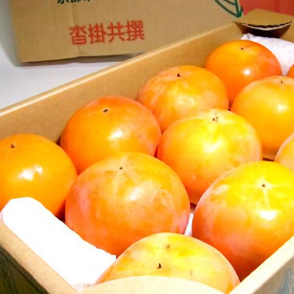 京都産 大枝柿(おおえのかき)「冨有柿」 大玉 3Lサイズ12個入り 甘柿 ふゆかき 富有柿01