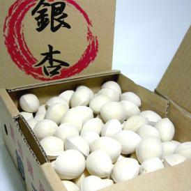 愛知産 銀杏 (ぎんなん) 3Lサイズ 500g(95個前後入り)