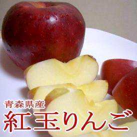 紅玉リンゴ(こうぎょくりんご) 5kg 小玉23~25個入り 青森 長野産 アップル