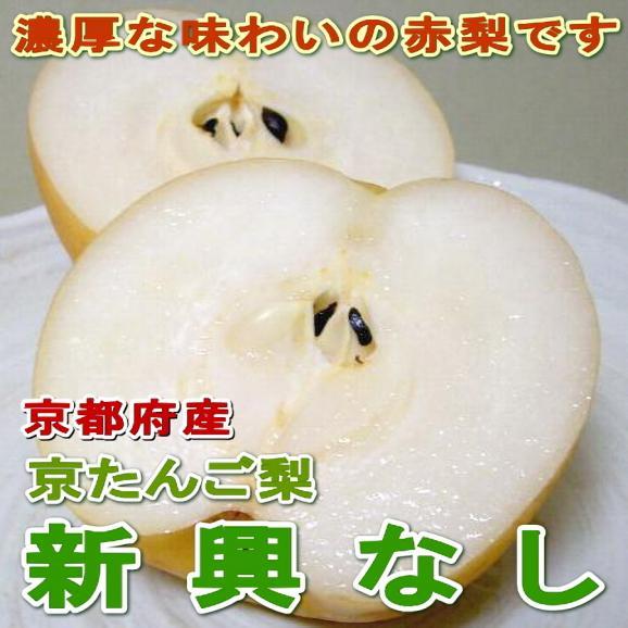 新興梨(しんこうなし)約5kg 超大玉 7~8個入り 京都産 「京たんご梨」02