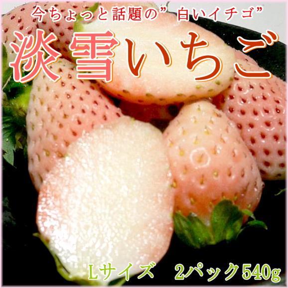 【白いちご】福岡産 博多 淡雪(あわゆき)イチゴLサイズ 17個前後入り×2パック入り箱 540g ※希少品のためお届け日はご指定いただけません02