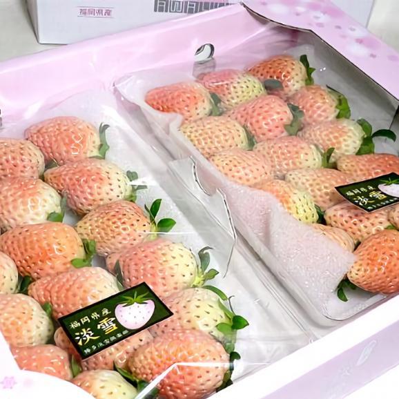 【白いちご】福岡産 博多 淡雪(あわゆき)イチゴLサイズ 17個前後入り×2パック入り箱 540g ※希少品のためお届け日はご指定いただけません04